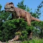 We 'DIG' Dinosaurs Mad Science Workshop (Register Grades 1-4) – Monday, July 15 @ 6:30-7:30pm
