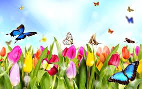 Fly Into Spring (Grades K-5) 4/29/15 6:30pm-7:30pm ~ Register!