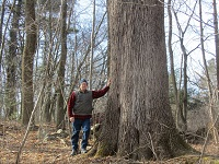 Big Trees of New Hampshire ~ Author Kevin Martin – Thursday, May 4th @ 6:30