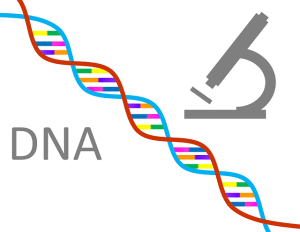 How Does DNA Help Your Genealogy Research ~ (Registration Required) @ 6:30 on 11/25/2019