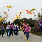 fly-kites